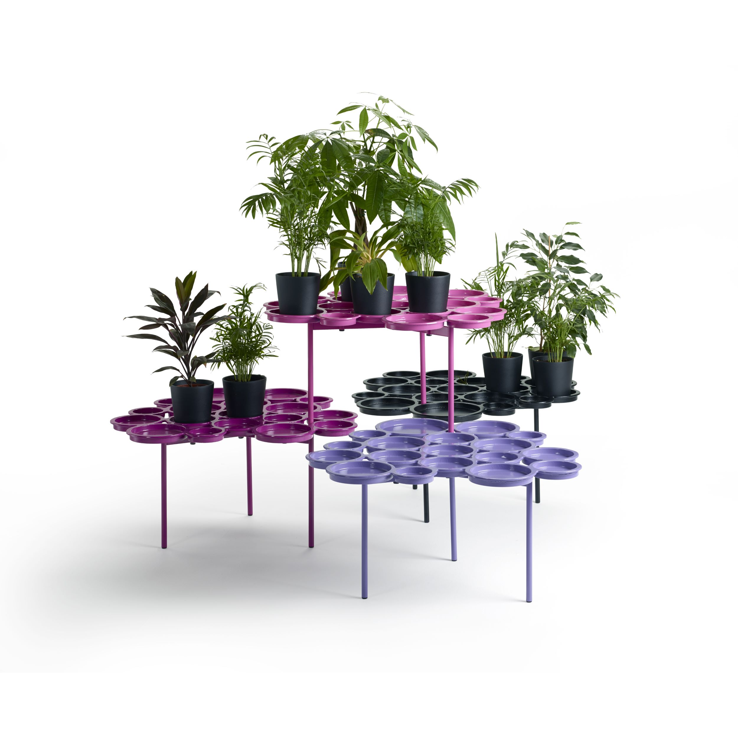 GREEN-PADS-O2asis-Luca-Nichetto-offecct-620001-06-2144